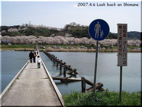 2007.04.06さくらの里きすき2.JPG