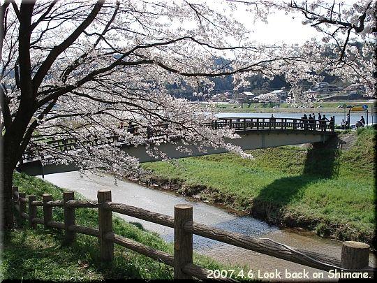 2007.04.06さくらの里きすき5.JPG