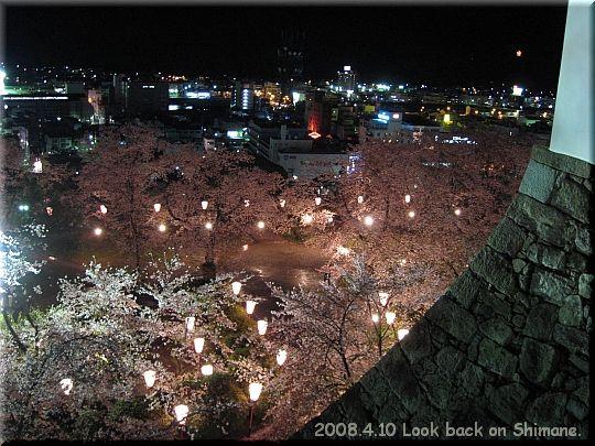 2008.04.10鶴山公園夜桜6.JPG