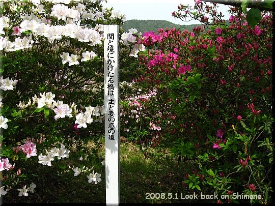 2008.05.01関の五本松公園10.JPG
