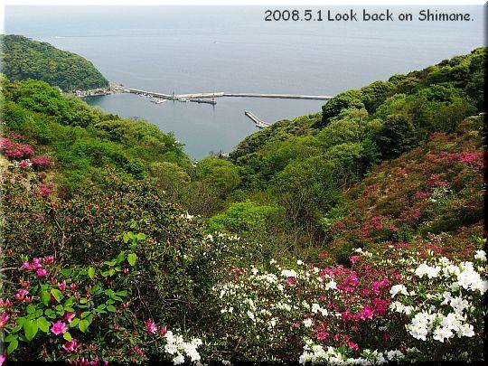 2008.05.01関の五本松公園11.JPG