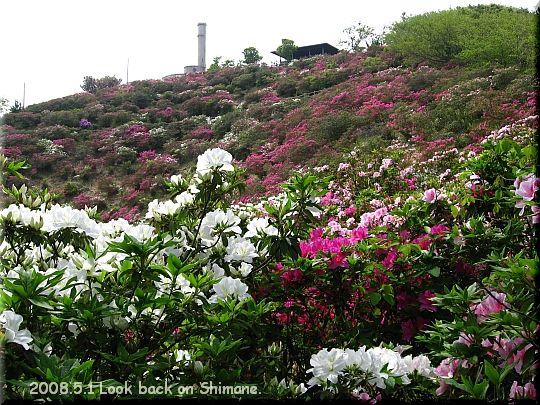 2008.05.01関の五本松公園13.JPG