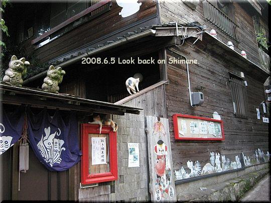 2008.06.05尾道猫の細道7.JPG