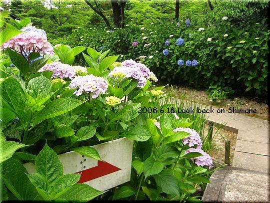 2008.06.18 5番月照寺9.JPG